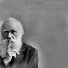 "Charles Darwin by Yousuf Karsh. ""There is a brief moment when all there is in a man's mind and soul and spirit is reflected through his eyes, his hands, his attitude. This is the moment to record."""