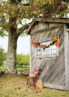 Great Fall decoration for a potting shed or garage Fresco, Rustic Shed, Yellow Apple, Country Decor, Country Life, Country Living, Country Fall, Apple Decorations, Autumn Garden
