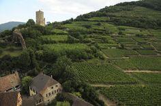 Le #Chateau de #Kaysersberg et le #vignoble