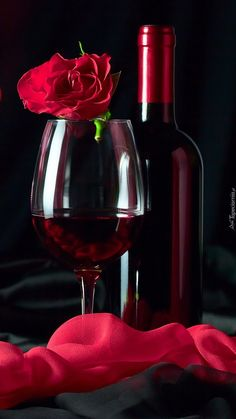 Book Flowers, Flowers For You, Wine Drinks, Alcoholic Drinks, Cocktails, Just Wine, Phone Wallpaper Design, Beautiful Red Roses, Red Rose Flower