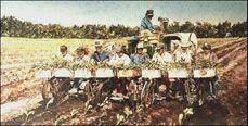 tobacco farming art prints | Jeff Jakub - NC Artist - Limited Edition Prints