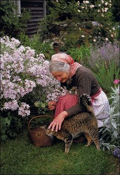 I am in love with Tasha Tudor all over again. I aspire to be like her. (Tasha Tudor with Minou) The Tudors, I Love Cats, Crazy Cats, Vie Simple, Foto Poster, Amor Animal, Tier Fotos, Cat People, Country Life