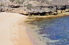 Cape Northumberland Coast near Port Macdonnell, South Australia #brandingsa #visitaustralia #campingaustralia #nomadness