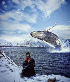 Caption This! Location: Antartica Photo by @oziseven