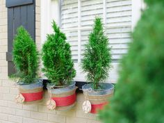 Turn galvanized buckets into window box planters for the holidays.