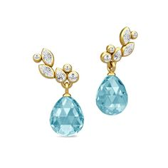 Treasure briolette earrings