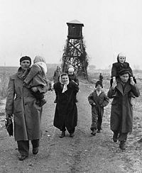 Hungarian refugees and the Hungarian uprising of 1956