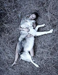 This photo reminds me of the pair that I use to have. Alaskan Timber Wolves 85%..The use to play with our house cat...