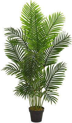 Add a splash of natural color to your decor without the hassle of maintenance with this artificial paradise palm tree from nearly natural. Photoshop, Travellers Palm, Trees Online, Artificial Tree, Tropical Decor, Tropical Plants, Plant Decor, Cactus Plants, Palm Trees