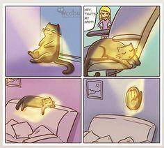 30 Cute & Funny Cats Comics