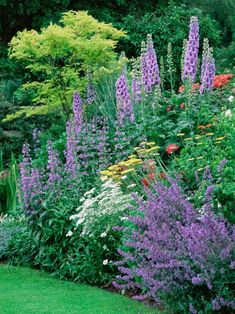 Perennial Gardens Require Less Maintenance Than Lawns But They Do Need  Regular Care To Look Their
