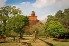 4 day itinerary of Sri Lanka's Cultural Triangle