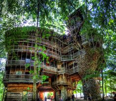 The world's biggest tree house, also known as the Minister's treehouse, was built in Crossville, Tennessee by Horace Burgess.
