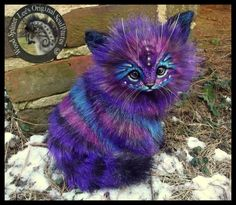 SOLD Handmade Poseable LIFE SIZED Stardust Kitten by Wood-Splitter-Lee.deviantart.com on @DeviantArt