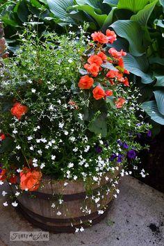 Barrel planter with hanging basket via FunkyJunkInteriors.net