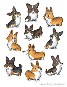 221 Best Pet Illustration Images Dog Illustration Drawings Of