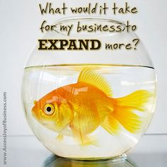 What would it take for my business to expand more?  www.AccessJoyOfBusiness.com