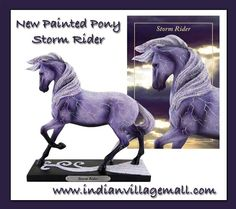 Storm Rider Painted Pony By Rod Barker and Lauren Reeser -Review off of: http://www.indianvillagemall.com/statue/ppstormrider.html    You can review the complete line of Painted Ponies -watch some videos about them and learn their history off of: http://www.indianvillagemall.com/statue/ppmenu.html