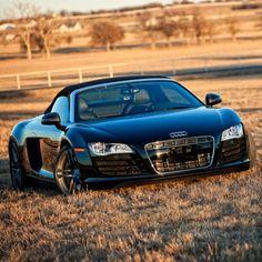 Audi R8... Field of Dreams :)