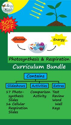 Photosynthesis and Cellular Respiration: Bundle Photosynthesis And Cellular Respiration, Life Science, Biology, Curriculum, Keys, Pdf, Teacher, Student, Activities