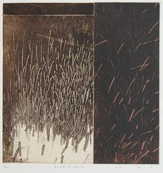 徳山村考-根をはらむ風 Considering Tokuyama village-The Wind Filled with Roots 25x24.5cm copperplate print with chine collé(etching) 林孝彦 HAYASHI Takahiko 1996-The Museum of Fine Arts, GIFU