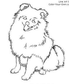 26 Best Dog Breeds Images On Pinterest