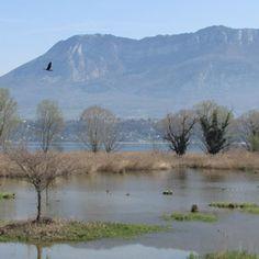 lac du bourget - Recherche Google