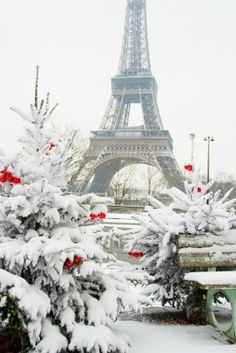 Eiffel Tower in winter, Paris - France