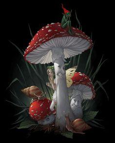 - Decorah North - Mushrooms and fairy Fantasy World, Fantasy Art, Elfen Fantasy, Fairy Pictures, Mushroom Art, Illustration, Fantasy Landscape, Fairy Art, Magical Creatures
