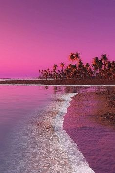 The thing that is first do every early morning is go online to check the surf. If the waves are good, I'll go surf. Dream Vacations, Vacation Spots, Beach Pink, Paraiso Natural, Tropical Beaches, Jolie Photo, Tropical Paradise, Paradise Travel, Belleza Natural