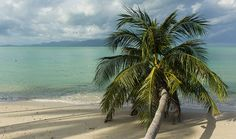 Popular sightseeing tours, activities, day trips and things to do in Mahe Seychelles is Bel Ombre Beach