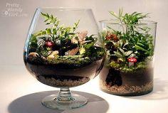 Növényterrárium házilag - lépésről -lépésre | Web