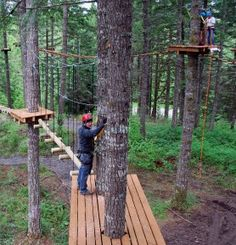 Tree To Tree Adventure Park   Travel Oregon