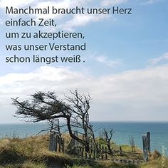 Trauerspruch Great Quotes, Inspirational Quotes, German Words, Healing Words, Sad Life, German Language, In Loving Memory, Bad Timing, Letter Art