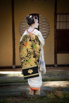 "geisha-kai: "" December 2015: famous maiko Mamefuji wearing a paulownia-themed obi by 木曽耕一 on Facebook Mamefuji is now retired… """