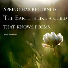 """""""Spring has returned. The earth is like a child that knows poems."""" - Rainer Maria Rilke"""