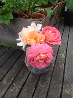 Posy of roses. 26th July 2014. Jubilee Celebration, Bridge of Sighs, Chandos Beauty.