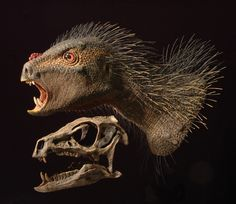 """Species New to Science: [Paleontology • 2012] Pegomastax africanus 