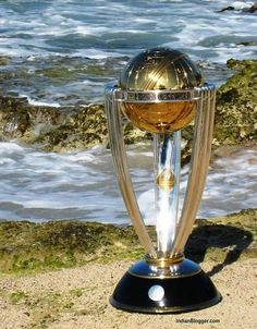 2015 ICC cricket world cup matches schedule, timings and fixtures