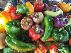 Rainbow of beautiful bell peppers. Ruston Farmers Market