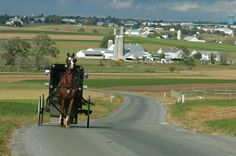 Oh those horse and buggies - Lancaster County PA