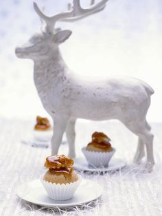 Walnussbällchen mit Ahornsirup | Zeit: 40 Min. | http://eatsmarter.de/rezepte/walnussbaellchen-mit-sirup