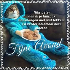 Pics For Fb, Animals And Pets, Cute Animals, Archangel Prayers, Happy Day, Sweet Dreams, Good Night, Dog Cat, Kitty
