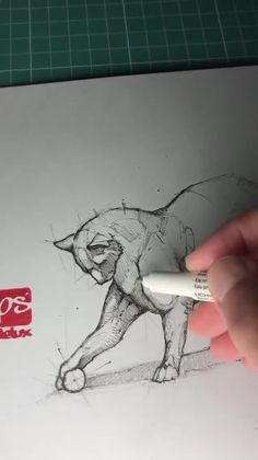 Psdelux is a pencil sketch artist based in Tatabá… Pencil sketch artist Psdelux. Psdelux is a pencil sketch artist based in Tatabánya, Hungary. He usually draws animal sketches. For more view website Pencil Art Drawings, Art Drawings Sketches, Sketch Art, Watercolor Sketchbook, Art Sketchbook, Animal Sketches, Animal Drawings, Art Du Croquis, Writing Art