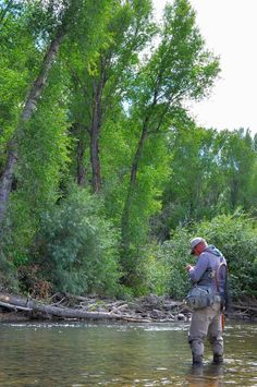 Colorado Fly Fishing Magazine: Flyfishing 101 - Essentials You Need To Get Started