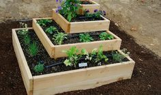 There are endless raised garden bed ideas and plans that you can get inspiration or learn from. A few cool designs and some tips are shared within this article. 5 Easy DIY Raised Garden Bed Ideas and Plans -- Raised Vegetable Gardens, Vegetable Garden Design, Vegetables Garden, Herbs Garden, Easy Garden, Cedar Garden, Wooden Garden, Raised Herb Garden, Raised Gardens