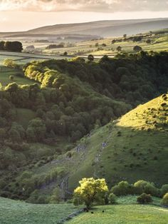 Monk's Dale, Derbyshire, England by John Cropper