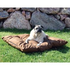 Cool Lounger Pet Bed - Large/Chocolate