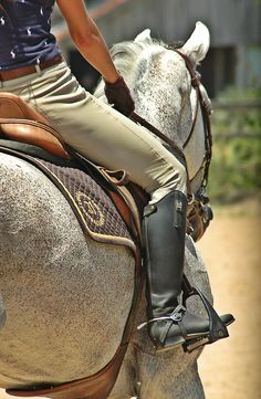 Schooling your horse - beautiful photo