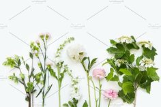 White and pink flowers by Julia Potato on @creativemarket